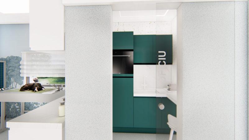 blue-vets-cabinet-cluj-Bun_11–Photo_16—Photo