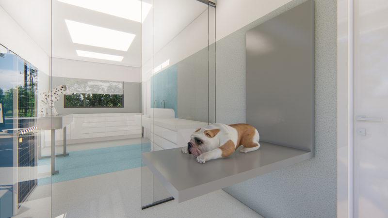 blue vets cabinet cluj Bun_4 – Photo