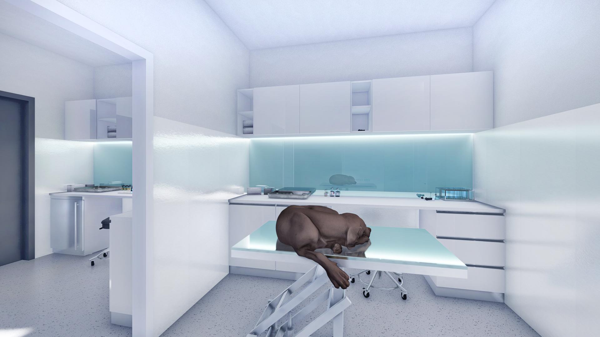 cabinet veterinar sala consultatii_9 – Photo